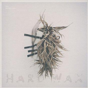 Cover art - Arad: Radiance Haze