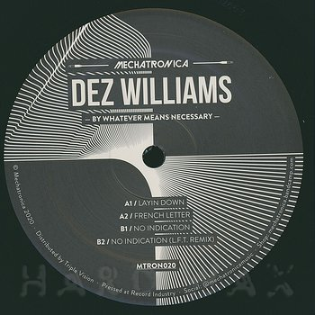 Cover art - Dez Williams: By Whatever Means Necessary