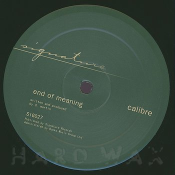 Cover art - Calibre: Falls To You VIP / End Of Meaning